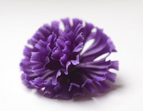 Цветы подарить цветы в уфе дешевые с доставкой минск для